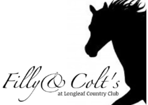 filly and colts